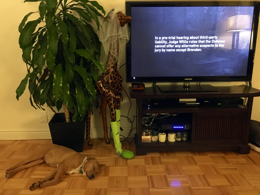 Ellie, meanwhile, is not so interested in the murder story.