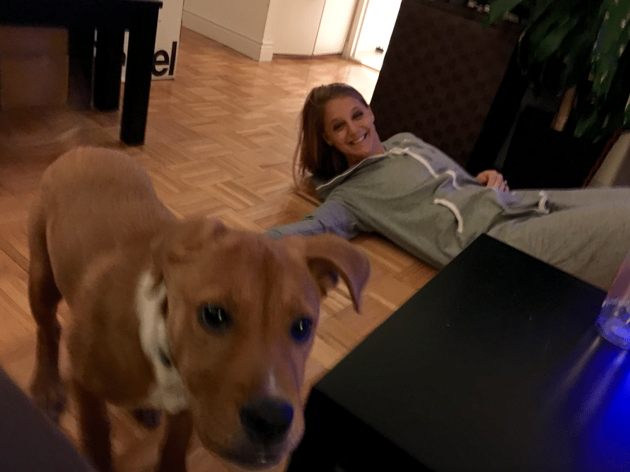 ONE OF US IS SOBER. The other one is a dog.