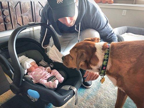 Pregnancy + Baby Q&A